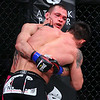 Boxing - MMA : 4 galleries with 399 photos